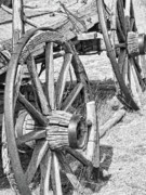 Old Wagon Prints - Old Wagon Wheels Monochrome Print by Jennie Marie Schell