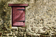 Red Farmhouse Prints - Old Wall and Door Print by Olivier Le Queinec