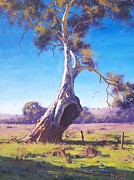 Eucalyptus Paintings - Old Warrior by Graham Gercken