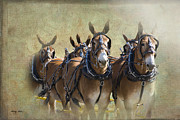 Mules Posters - Old West Mule Train Poster by Betty LaRue