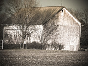 Old Barns Mixed Media Posters - Old White Barn Poster by Connie Dye