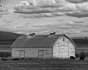 Cupula Prints - Old White Barn on Fairview Road - Kittitas County - Washington Print by Steve G Bisig
