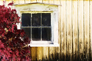 Martin Dzurjanik Metal Prints - Old White Window Metal Print by Martin Dzurjanik