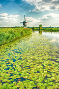 Canals Framed Prints - Old Windmill - Kinderdijk Framed Print by Philip Sweeck