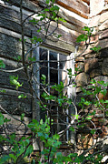 Cabin Window Prints - Old Window Print by Lydia Holly