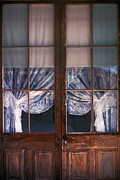 Lace Curtains Prints - Old Wood and Lace Print by Paul W Faust -  Impressions of Light