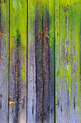 Process Photos - Old Wooden Background by Carlos Caetano