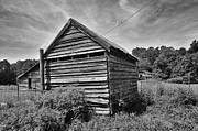 Sheds Framed Prints - Old wooden farm buildings in a rural South Carolina field Framed Print by David Perry Lawrence