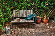 Sheila Smart - Old wooden garden bench
