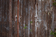 Old Door Pyrography - Old wooden gates by Anna Grigorjeva
