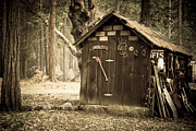 Shed Photos - Old wooden shed Yosemite by Jane Rix