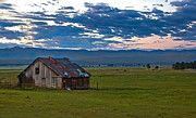 Old Working Barn Print by Robert Bales