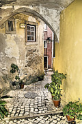 Potted Plants Posters - Old World Courtyard of Europe Poster by David Letts