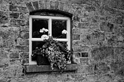 Martina Fagan - Oldbridge Window