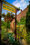 Painted Garden Gate Framed Prints - Olde Allegheny Community Gardens Framed Print by Amy Cicconi