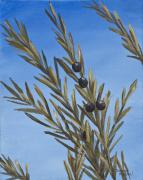 Branch Painting Originals - Olive Branch  by Darice Machel McGuire