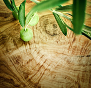 Olives Photo Posters - Olive branch on olive wood background Poster by Nikolina Petolas