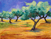 Olive Oil Painting Framed Prints - Olive Trees Grove Framed Print by Elise Palmigiani