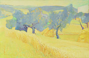 Prairie Sunset Paintings - Olive Trees in Tuscany by Antonio Ciccone