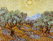 Purple Posters - Olive Trees Poster by Vincent Van Gogh