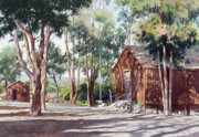 Eucalyptus Tree Prints - Olivenhain Meeting House Print by Mary Helmreich