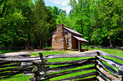 Log Cabin Art Photo Metal Prints - Oliver Cabin 1820s Metal Print by David Lee Thompson