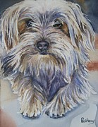 Dog Watercolor Framed Prints - Ollie Framed Print by Patricia Pushaw