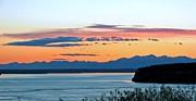 South Puget Sound Prints - Olympic Afterglow Print by Chris Anderson