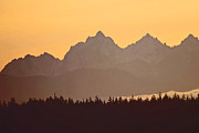 Dave Walton - Olympic Mountians Near...