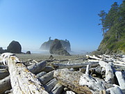 Pacific Ocean Mixed Media - Olympic National Park - Pacific Beach by Photography Moments - Sandi