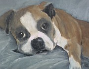 Boxer Painting Prints - Omar Print by Susan Richardson