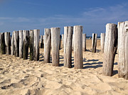 Wood Pylons Photos - On A Beach in The Netherlands by Mountain Dreams