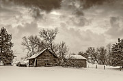 Barn Storm Prints - On a Winter Day sepia Print by Steve Harrington