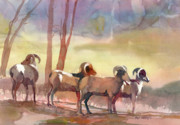 Bighorn Paintings - On Alert by Kris Parins