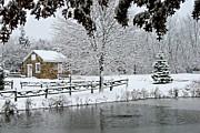 DJ Florek - On Frozen Pond