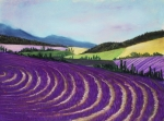 Landscape Prints Pastels Framed Prints - On Lavender Trail Framed Print by Anastasiya Malakhova