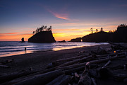 Cannon Beach Photos - On the Beach by Mike Reid