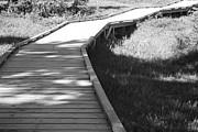 Marilyn Wilson - On the Boardwalk - bw