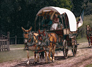 Covered Wagon Posters - On The Bozeman Trail Poster by Kae Cheatham