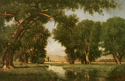 Oak Trees Paintings - On the Cache la Poudre River Colorado by Thomas Worthington Whittredge