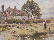 Geese Paintings - On the Common Hambledon Surrey by Myles Birket Foster