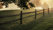 Rural Landscapes Art - On the fence by Bill  Wakeley