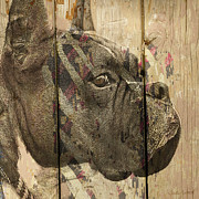 Boxer Dog Digital Art Metal Prints - On the Fence Metal Print by Judy Wood
