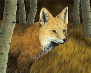 Foxes Prints - On the Hunt Print by Rick Bainbridge