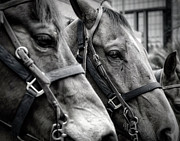 Mounted Photos - On the Job by Joan Carroll