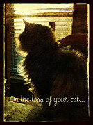 Sue Fulton - On the Loss of Cat...