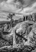 Needles Highway Prints - On The Needles Highway 2 BW Print by Mel Steinhauer