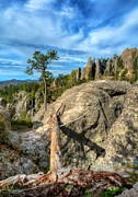 Needles Highway Prints - On The Needles Highway 2 Print by Mel Steinhauer