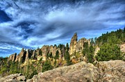Needles Highway Prints - On The Needles Highway 5 Print by Mel Steinhauer