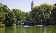 Rowers Photos - On The Pond - Central Park by Madeline Ellis
